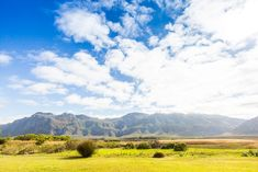 Stanford is a rural town with nature, a beautiful river and history, plus it's an easy weekend escape for Cape Townians. Pippa De Bruyn seeks out its gems. South Africa, Magazine, River, Mountains, History, Places, Nature, Beautiful, Historia