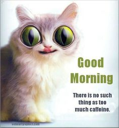 Good Morning There Is No Such Things As To Much Caffiene morning good morning…