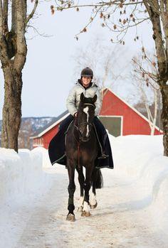 Winter Riding Tips