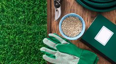 Organic Lawn Care Tips Organic Lawn Care, Organic Soil, Organic Gardening, Gardening Tips, Garden Pests, Garden Tools, Garden Fertilizers, Lawn Care Business, Lawn Care Tips