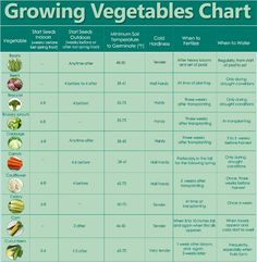 Growing Veggies Chart - a nice condensed guide to for when to start your seeds and plant care through the season!