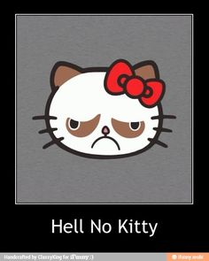 Hell No Kitty! Priceless