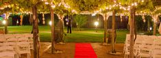 Unique Wedding Ceremonies with a difference