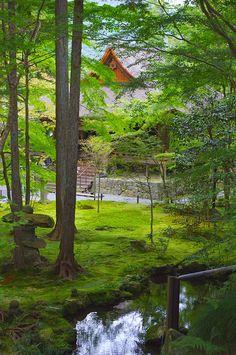 Beautiful Japanese Moss garden, Ohara, Kyoto, Japan