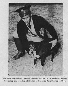 The first Reveille