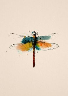 Original Animal Painting by Silvan Borer   Expressionism Art on Paper   dragonfly - Limited Edition of 10