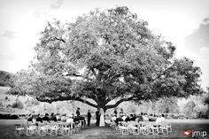 my dream to marry under an oak tree with a setting like this almost.