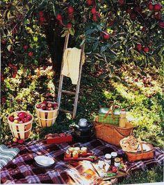 Let's have a picnic!!!