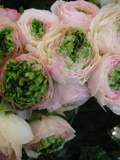 { Pink and green peonies...}