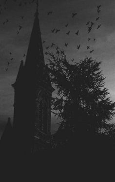 beauty Black and White creepy birds dark morbid darkness Macabre torment tormented-spirituality Gothic Aesthetic, Slytherin Aesthetic, Witch Aesthetic, Black Aesthetic Wallpaper, Aesthetic Wallpapers, Images Terrifiantes, Dark Castle, Photo D Art, Dark Paradise