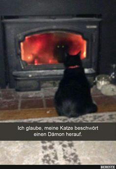 Ich glaube, meine Katze beschwört einen Dämon herauf..