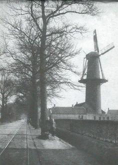De hoogste molen van Nederland Liesboschlaan Princenhage