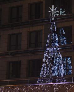 Doble reflejo cómo te nombraré al verte otra vez?  . . El año pasado fui a Coruña y pillé un efecto bien curioso  aunque el árbol de este año es dorado y mola más  no os parece un color más navideño que el azul? . . Espero que hayáis tenido un buen día!