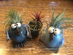 Air plant birds, pottery, maddmud.com Clay Birds, Ceramic Birds, Ceramic Animals, Clay Animals, Ceramic Pottery, Ceramic Art, Plant Projects, Clay Art Projects, Ceramics Projects