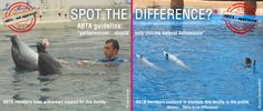 ABTA - GET TOUGH! STOP YOUR MEMBERS SUPPORTING ORCA CRUELTY