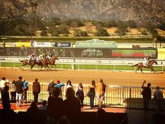 We Were At Santa Anita Park Driving VIP's To The Horse Races :-) Book Your Next Limo Today And Win By A Nose!!! (866) 319-LIMO