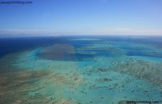 gran-barrera-de-coral-australia  Where Nemo and his father live! Later life would take them to 42, Wallaby st. Sydney.