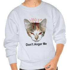 Dont Anger Me Pull Over Sweatshirt!  #cute #kitten #zazzle #store #meow #gifts #presents #customize http://www.zazzle.com/conquestkitty*
