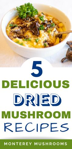 Looking for dried mushroom recipes? Check out these 5 delicious options! Dry Mushroom Recipes, Mushroom Side Dishes, Best Mushroom Recipe, Mushroom Appetizers, Baked Mushrooms, Creamed Mushrooms, Stuffed Mushrooms, Spring Recipes, Healthy Dinner Recipes
