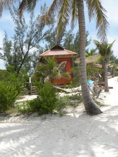 Castaway Cay #themouseforless
