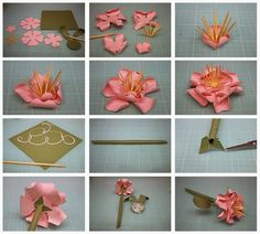 3D Flowers!