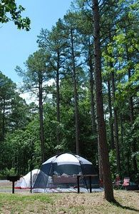 Thinking about camping? Don't forget to check out our beginner's guide to make sure you have everything you need for your Oklahoma adventure!