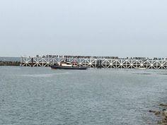 June 10: Tournage de #Dunkirk de #Nolan sur la jetée de Malo à Dunkerque @jeanbart2959/twitter