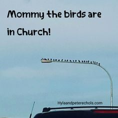 """When I was a little girl when I'd see birds sitting like this I'd say """"Look mommy the birds are in Church."""""""
