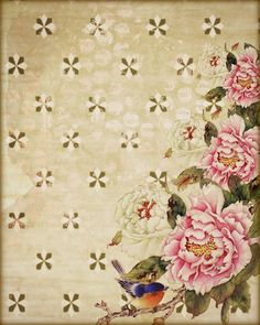 Blue Bird & Peonies  Background Papers