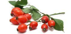 Шиповник! (Roza canina)   Помимо сумасшедшего количествa антиоксидантов, в 100 граммах свежего шиповника - 7 дневных норм витамина С ( в 10 раз больше, чем в апельсине) и, практически, дневная норма растительной клетчатки. (Шиповник - не совсем ягода, но, если придерживаться ботанической классификации, то малина и клубника – тоже не ягоды, а фрукты, а арбуз и банан - ягоды).  Легенды о шиповнике, как правило, - печальные: нежный цветок, красный плод и острые шипы, видимо, навевают мысли о…