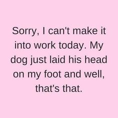 Doggy Dans Kind & Gentle Dog Training Method - Funny Dog Quotes - Pennsylvania Artist LouLou Clayton loves her dogs!loulouclayton The post Doggy Dans Kind & Gentle Dog Training Method appeared first on Gag Dad. All Dogs, I Love Dogs, Puppy Love, Cute Dogs, Yorkies, Chihuahuas, Beagles, Jiff Pom, Funny Animals