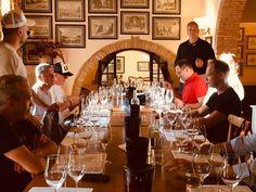 ° throwback sunday °  ..ein kleiner Auszug unserer Weinreise mit Morandell..  #weinreise #toscana #ornellaia # solaia #bolgheri #wine #tasting #151er Events, Wine