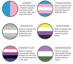 Some people believe that you need dysphoria to be transgender, however, that& not the case. Transgender Ftm, Gender Binary, Pansexual Pride, Lgbt Memes, Genderqueer, Lgbt Community, Amai, Gay Pride, Pride Flag