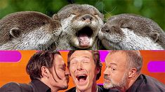 Benedict, Johnny Depp and Graham Take Otter Photos - The Graham Norton Show 27th November 2015