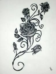 Image result for vine rose portland drawing