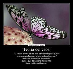 """""""El aleteo de una mariposa puede causar un tifón en algún lugar del mundo."""""""