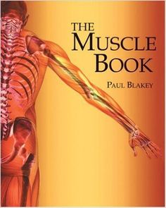Epimysium : Anatomy of Muscle Structure Dance Books, Yoga Books, Chest Workouts, Fit Board Workouts, Muscle Structure, Effective Ab Workouts, Muscle Building Supplements, Muscle Anatomy, Skeletal Muscle