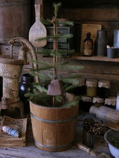 Sweet primitive Christmas tree in wood bucket! Stop by for a visit at Sweet Liberty Homestead http://www.picturetrail.com/sweetliberty