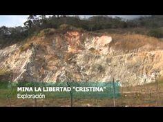 Impacto a la biodiversidad por la minería