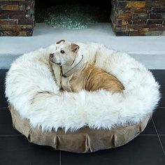 think i need to buy this for my spolied dog - Animals Matter® Faux Fur Puff Pet Bed