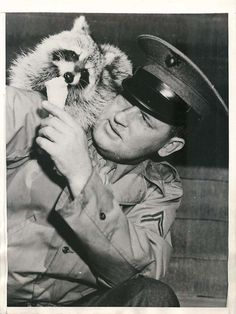 "1944- ""Oscar"", raccoon mascot of MP company at the Marine Corps base at Parris Island, mooches some ice cream from soldier at the PX."