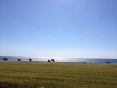 #Cyprus #Spring