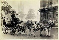 London, 1894