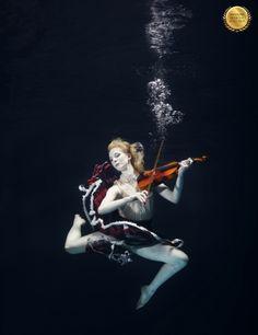 Check out MrandMrsBucketList.com for more wildlife travel inspirationTitle: Underwater Music | Category: Underwater | Country: Denmark