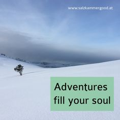 Adventures fill your soul Fill, Adventure, Mountains, Nature, Blog, Travel, Voyage, Blogging, Viajes