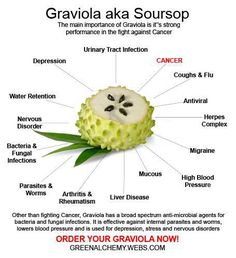 7 Best Soursop or Guanabana images | Health, Fruit, Health, wellness