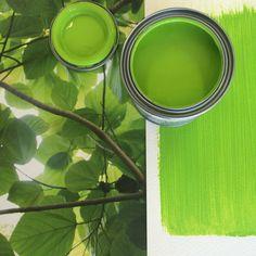 Designers Guild Varese Leaf paint