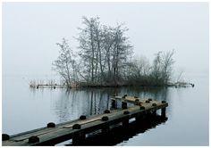 ☆ Fog Amsterdam Forest 2 -::- By Artist Dennis Sibeijn ☆