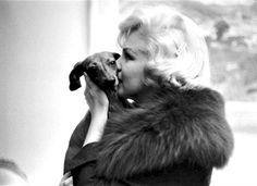 Marilyn Monroe  kissing a Dashdog (marilyn monroe,kissing,dogs,dash dogs,vintage,photography,beautiful,love,cute,adorable,animal,pet)