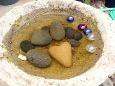 WHY PUT STONES IN YOUR BIRD BATH? By Crystal Carvotta-Brown of Mass Cats